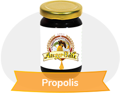 Propolis Firm 100 GR % 95 lik. exract